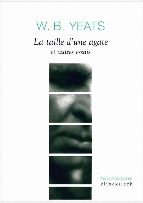 TAILLE D'UNE AGATE ET AUTRES ESSAIS (LA)