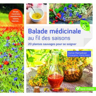 Balade médicinale au fil des saisons : 20 plantes sauvages pour se soigner